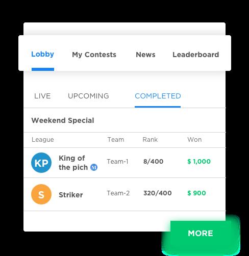 fully customizable fantasy sports software development by Vinfotech