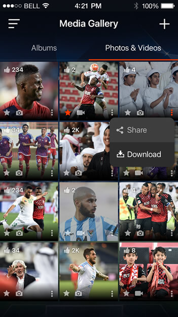 Social Network Solutions for Sports Fans